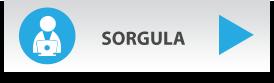 btn-sorgula.png